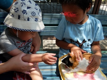 荒川遊園7.JPG