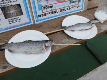 としまえん釣り14.JPG
