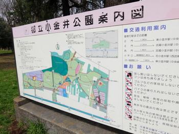 小金井ソリ遊び1.JPG