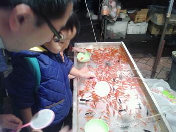 金魚すくい1.jpg