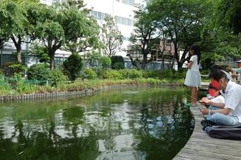 釣り堀8.JPG